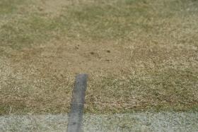 La Federtennis pakistana ha presentato ricorso all'ITF per aver perso a tavolino il match di Davis Cup contro la Nuova Zelanda