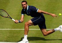 ATP Queen's: Risultati live delle semifinali. In campo Marin Cilic e Novak Djokovic