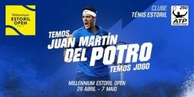 Juan Martin Del Potro nella foto