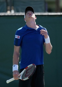 Kyle Edmund classe 1995, n.242 ATP