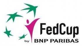 Fed Cup edizione 2011