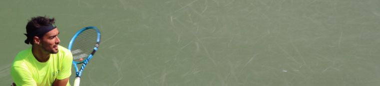 Fabio Fognini classe 1987, n.17 ATP