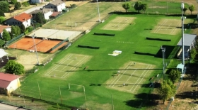 I campi in erba di Gaiba (Rovigo)