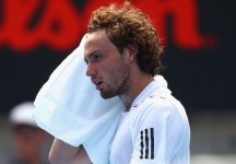 Gulbis In Fundo