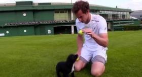 Wimbledon, Tweet, Video e Varie - Day 8