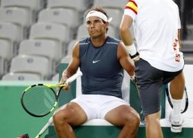 Rafael Nadal classe 1986, n.4 del mondo