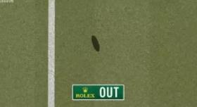 Roger Federer e occhio di falco