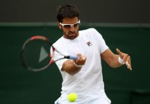A Stoccarda vince Tipsarevic. Ferrer si impone a Bastad