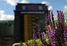 Wimbledon Live: Concluso il sorteggio dei tabelloni principali