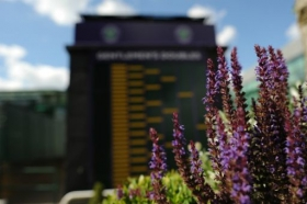 Tra poche ore ci sarà  il sorteggio dei tabelloni principali del singolare maschile e femminile del torneo di <strong>Wimbledon (alle ore 11 italiane).</strong>