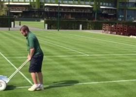 Wimbledon: Già iniziata la preparazione dei campi