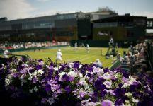 Wimbledon sulla BBC almeno fino al 2024